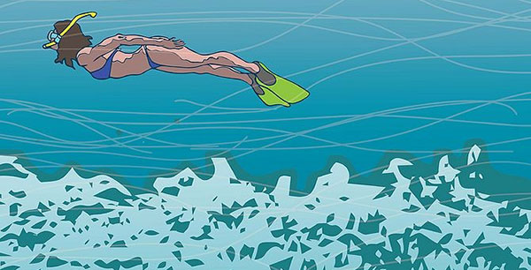 How to protect Coral Reefs when snorkeling