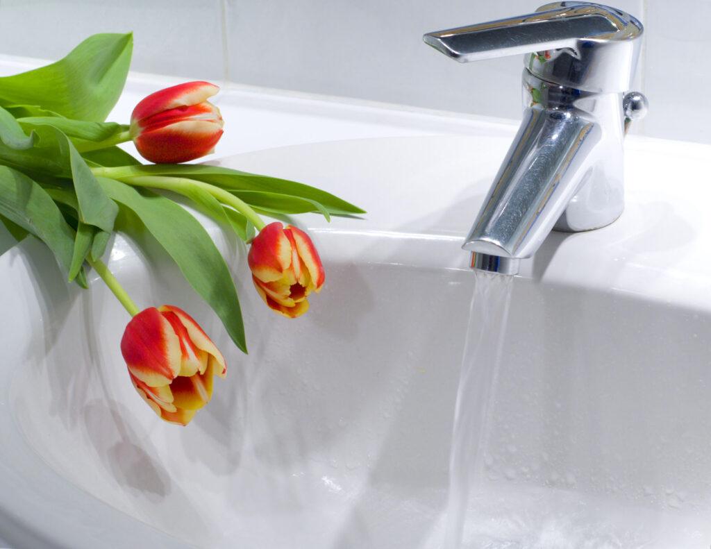 plumbing tips spring season